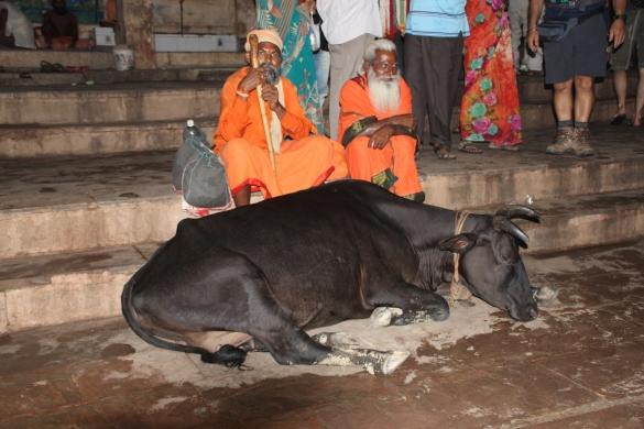 160926 72 Varanasi - Ganga Aarti - Holy men