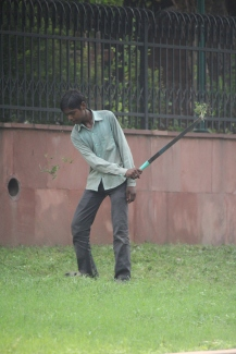 160929 046 Delhi - Red Fort cutting grass
