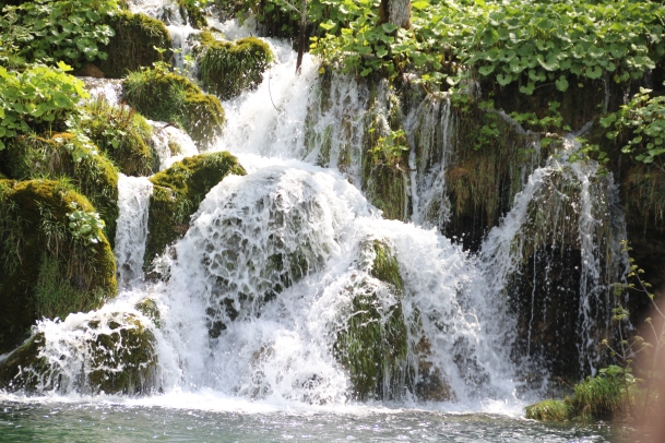 180502 51 plitivice national park img_8283